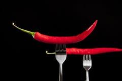 καυτά πιπέρια δύο δικράνων Στοκ Φωτογραφία