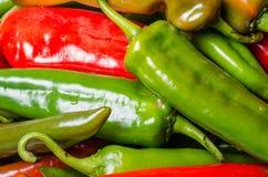 Καυτά πιπέρια στην επίδειξη έτοιμη να χρησιμοποιήσει Στοκ εικόνες με δικαίωμα ελεύθερης χρήσης