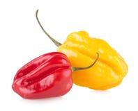 καυτά πιπέρια του Cayenne Στοκ φωτογραφία με δικαίωμα ελεύθερης χρήσης
