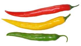 καυτά πιπέρια τσίλι Στοκ Εικόνα