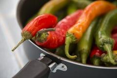 Καυτά πιπέρια τσίλι των διαφορετικών χρωμάτων Στοκ εικόνα με δικαίωμα ελεύθερης χρήσης