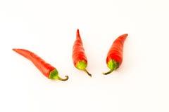 καυτά πιπέρια Στοκ φωτογραφίες με δικαίωμα ελεύθερης χρήσης