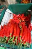 καυτά πιπέρια Στοκ εικόνες με δικαίωμα ελεύθερης χρήσης