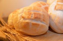 Καυτά τρόφιμα αρτοποιείων ψωμιού καφετιά Στοκ Εικόνα