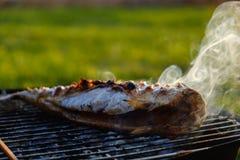 Καυτά ψάρια σκουμπριών σε ένα τηγάνι ψησίματος στη σχάρα, με τα καρυκεύματα χορταριών στην πυρκαγιά Στοκ Εικόνες