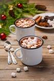 καυτά marshmallows σοκολάτας Στοκ εικόνα με δικαίωμα ελεύθερης χρήσης