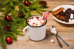 καυτά marshmallows σοκολάτας Στοκ φωτογραφίες με δικαίωμα ελεύθερης χρήσης