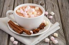 καυτά marshmallows σοκολάτας Στοκ εικόνες με δικαίωμα ελεύθερης χρήσης