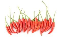 καυτή κόκκινη σειρά τσίλι Στοκ εικόνες με δικαίωμα ελεύθερης χρήσης