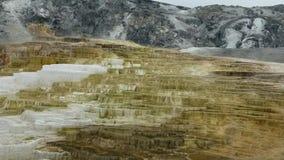 Καυτή μαμμούθ άνοιξη πάρκων Yellowstone εθνική φιλμ μικρού μήκους