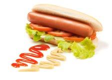 καυτή ντομάτα μαρουλιού σκυλιών Στοκ εικόνες με δικαίωμα ελεύθερης χρήσης