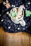 Καυτή σοκολάτα με αστείο marshmallow στοκ εικόνες με δικαίωμα ελεύθερης χρήσης