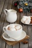 Καυτή σοκολάτα με marshmallows και τα καρυκεύματα Στοκ Φωτογραφία