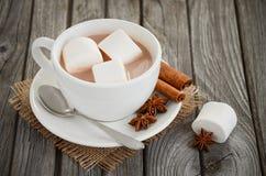 Καυτή σοκολάτα με marshmallows και τα καρυκεύματα Στοκ εικόνες με δικαίωμα ελεύθερης χρήσης