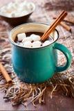 Καυτή σοκολάτα στοκ φωτογραφίες με δικαίωμα ελεύθερης χρήσης