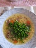 Καυτή σούπα βόειου κρέατος Στοκ φωτογραφία με δικαίωμα ελεύθερης χρήσης