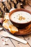 Καυτή σούπα μανιταριών Στοκ Εικόνα