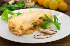 Καυτή σούπα με κρέας με το juicy κοτόπουλο, τα μανιτάρια, τη σάλτσα κρέμας και το τυρί Ορεκτικό κρέατος Ξύλινη ανασκόπηση Τοπ όψη Στοκ Φωτογραφίες
