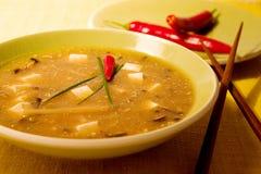 καυτή σούπα ξινή στοκ φωτογραφίες