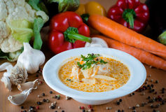 Καυτή φυτική σούπα με στενό επάνω λάχανων Στοκ Φωτογραφίες