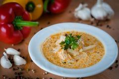 Καυτή φυτική σούπα με στενό επάνω λάχανων Στοκ εικόνα με δικαίωμα ελεύθερης χρήσης