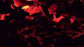 Καυτός άνθρακας μετά από την περίληψη πυρκαγιάς απόθεμα βίντεο