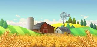 καυτός θερινός σίτος πεδίων ημέρας Διανυσματική ανασκόπηση απεικόνιση αποθεμάτων