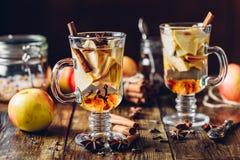 Καυτός μηλίτης μήλων Στοκ Εικόνες