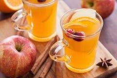 Καυτός πορτοκαλής μηλίτης μήλων με το θερμαίνοντας ποτό καρυκευμάτων κανέλας Στοκ Φωτογραφία