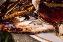 καυτός ψαριών που καπνίζε& κρέας που καπνίζεται Καπνισμένα ψάρια Καπνισμένα σίκαλη ψάρια Στοκ εικόνες με δικαίωμα ελεύθερης χρήσης