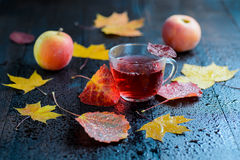 Καυτό βοτανικό τσάι βιταμινών φθινοπώρου στο διαφανές φλυτζάνι με το υδρατμό με τα φύλλα και τα μήλα φθινοπώρου Στοκ Φωτογραφίες