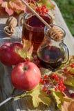 Καυτό βοτανικό τσάι τοπ άποψης στο φλυτζάνι γυαλιού με το φαγόπυρο honey9 στοκ εικόνες