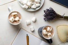 Καυτό κακάο με marshmallow στοκ εικόνα με δικαίωμα ελεύθερης χρήσης