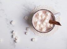 Καυτό κακάο με Marshmallows στοκ εικόνες με δικαίωμα ελεύθερης χρήσης