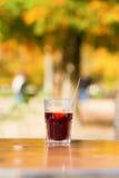 καυτό κρασί γυαλιού Στοκ Εικόνες
