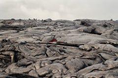 καυτό κόκκινο λάβας ροής Στοκ Φωτογραφίες