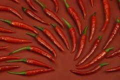 καυτό κόκκινο πιπεριών τσίλι Στοκ Εικόνα