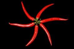 καυτό κόκκινο πιπεριών τσίλι Στοκ εικόνες με δικαίωμα ελεύθερης χρήσης