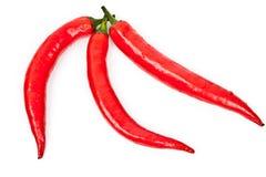 καυτό κόκκινο πιπεριών Στοκ Εικόνα