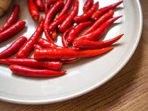 Καυτό κόκκινο τσίλι στο πιάτο Στοκ Φωτογραφίες