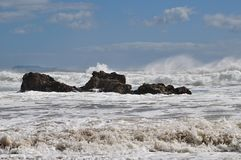 καυτό νέο ύδωρ Ζηλανδία παρ&a στοκ εικόνες