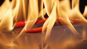 Καυτό πιπέρι στην πυρκαγιά φιλμ μικρού μήκους