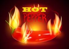 Καυτό πιπέρι τσίλι στην πυρκαγιά ελεύθερη απεικόνιση δικαιώματος