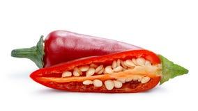 Καυτό πιπέρι Jalapeno (καψικό Annuum) Στοκ εικόνα με δικαίωμα ελεύθερης χρήσης