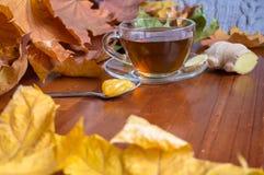 Καυτό τσάι με την πιπερόριζα και το μέλι Στοκ φωτογραφία με δικαίωμα ελεύθερης χρήσης