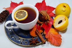 Καυτό τσάι με το λεμόνι τα βράδια φθινοπώρου και χειμώνα - μια εναλλακτική λύση στα αντιβιοτικά - εκλεκτική εστίαση στοκ εικόνα
