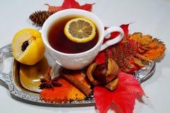 Καυτό τσάι με το λεμόνι τα βράδια φθινοπώρου και χειμώνα - μια εναλλακτική λύση στα αντιβιοτικά - εκλεκτική εστίαση στοκ φωτογραφία