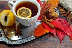 Καυτό τσάι με το λεμόνι τα βράδια φθινοπώρου και χειμώνα - μια εναλλακτική λύση στα αντιβιοτικά - εκλεκτική εστίαση στοκ φωτογραφίες