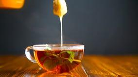Καυτό τσάι με το μέλι σε ένα φλυτζάνι γυαλιού απόθεμα βίντεο