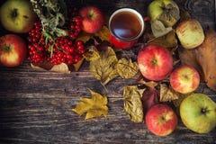 Καυτό φλυτζάνι τσαγιού μια ημέρα φθινοπώρου Επιτραπέζιο υπόβαθρο με τα φύλλα και το α Στοκ φωτογραφίες με δικαίωμα ελεύθερης χρήσης